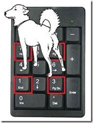 Mapping paws to keypad keys